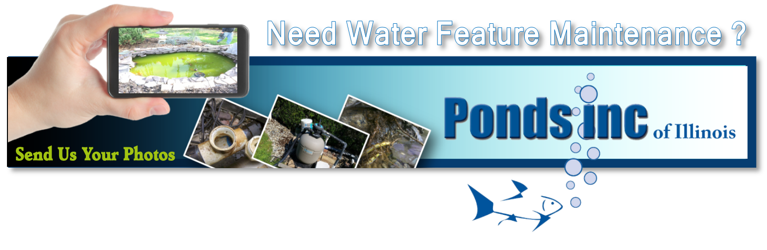 Pond Maintenance Services Contact